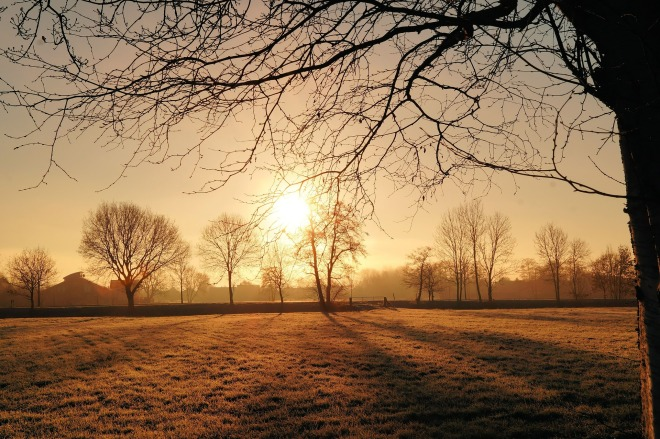 sunrise-580379_1920